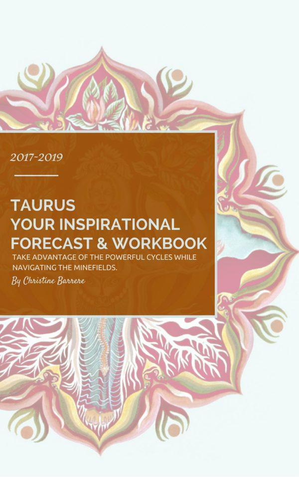 Taurus 2017-19