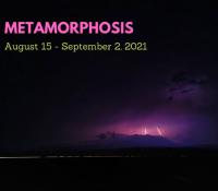 Stardrops – August 15   Metamorphosis